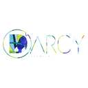 D'Arcy Surfboards logo