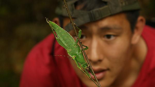 Environmental Science student with insect