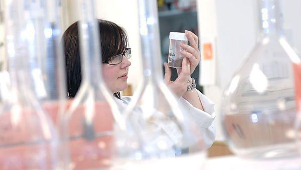 BSc (Hons) Biomedical Sciences - Career, further study and research opportunities