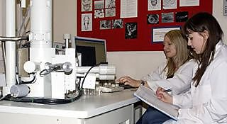 Make use of cutting-edge equipment such as the transmission electron microscope in the election microscopy suite