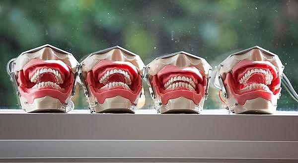 Snappy dental survey for Universities Week 2014