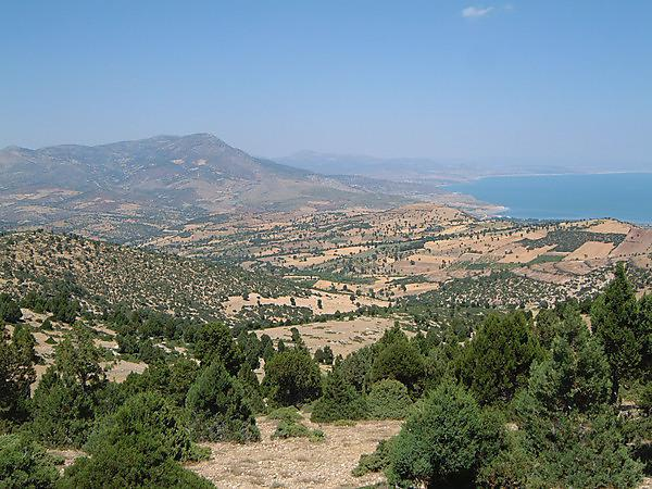Changing the face of the Mediterranean: land cover and population change