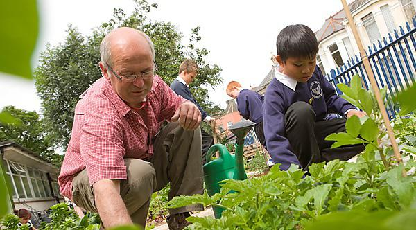 Study shows that allotment gardening improves health and wellbeing