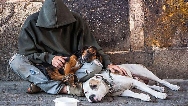 beggar, homeless with two Dogs near Charles Bridge, Prague, Copyright: duchy, courtesy of Shutterstock