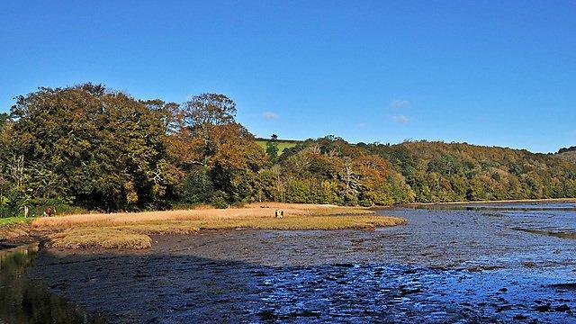 Estuary - quaternary environments
