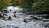 Kayaking on the River Dart
