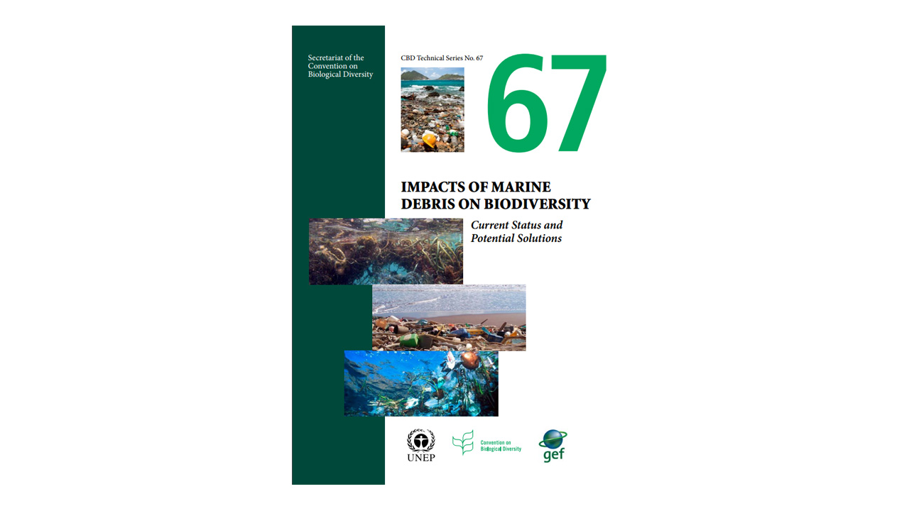 Impacts of Marine Debris on Biodiversity: Current status and Potential Solutions (2012)