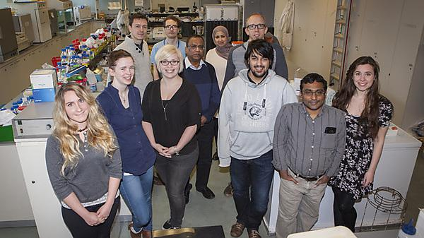 Genetic Toxicology & Ecotoxicology Research Group team