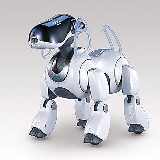 Sony AIBO robots