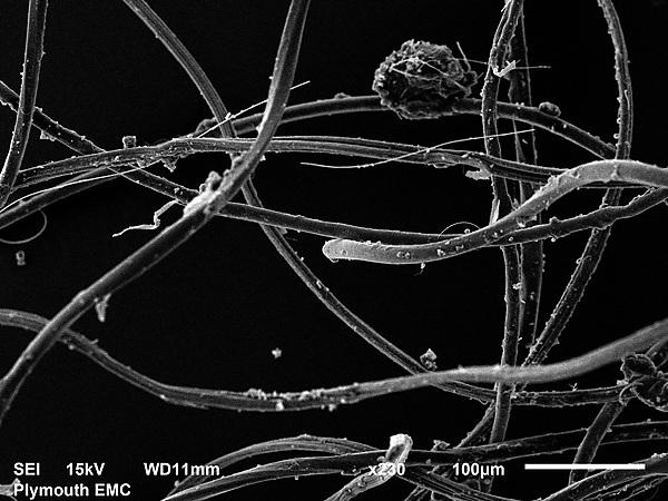 <p>A clump of acryllic fibres seen under microscopes at the University's Electron Microscopy Centre</p>