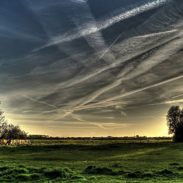 <p>Countryside</p>