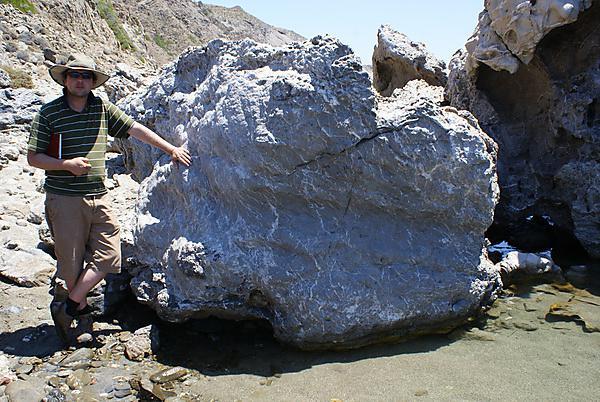 Dr Michael Whitworth next to a tsunami boulder