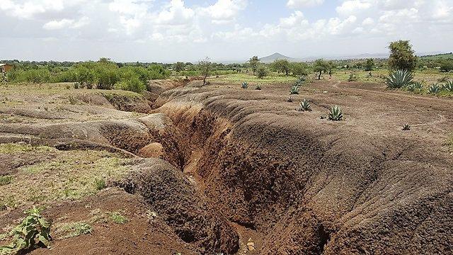 <p>Soil erosion</p>