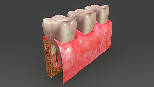 <p>Oral mucosal 3D tissue models – Dr Vehid Salih. Oral disease development mechanisms, treatment and diagnostics. Image courtesy of Shutterstock.<br></p><p><br></p>