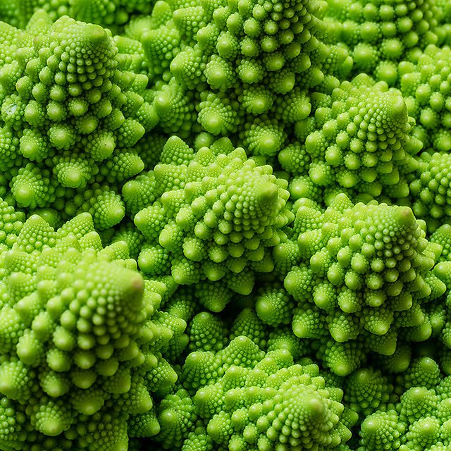 <p>  </p><div>  Many objects in nature, from blood vessels in your body to flowers and vegetables, take on a fractal structure. These mathematical structures are investigated in your degree.  </div><p></p>