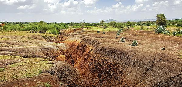 <p>Gulley erosion in Africa</p>