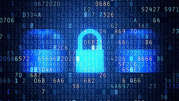 <p>Computer and Information Security induction image - image courtesy of Shutterstock</p>