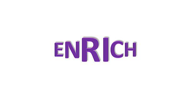 <p>Enrich logo</p>