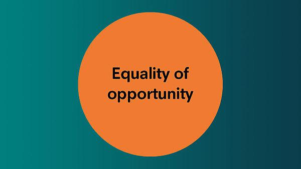 <p>Equality of opportunity</p>