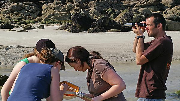 Conservation biology students working on the estuary