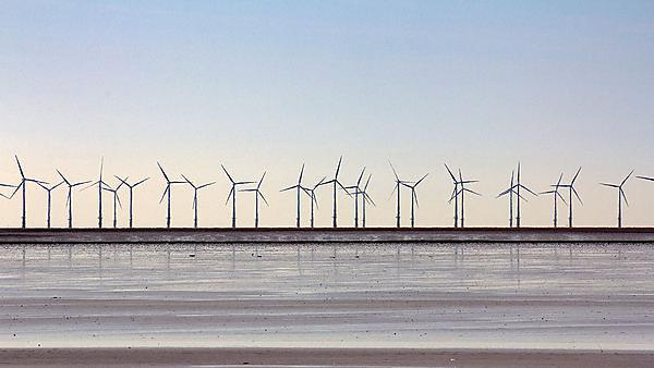 <p>Wind turbines - image courtesy of Getty</p>
