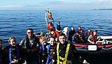 Group diving shot
