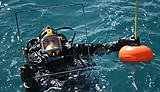 Quadrat survey. Credit: Atlantic Diver