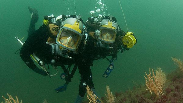 <p>Student dive pair researching pink seafans</p>