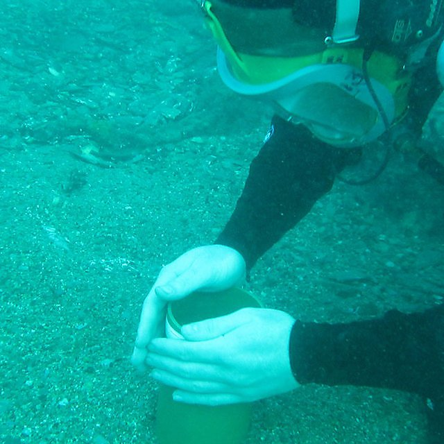 <p>Sediment sample collection</p>
