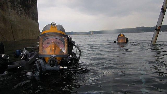 <p>Divers</p>