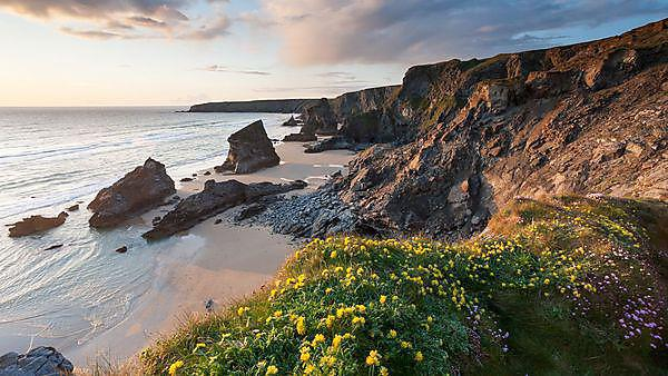 <p>Wild flowers on the cliffs at sunset overlooking the beach and sea stacks at Bedruthan Steps, Cornwall, England. Credit: ianwool, image courtesy of Getty Images.<br></p>