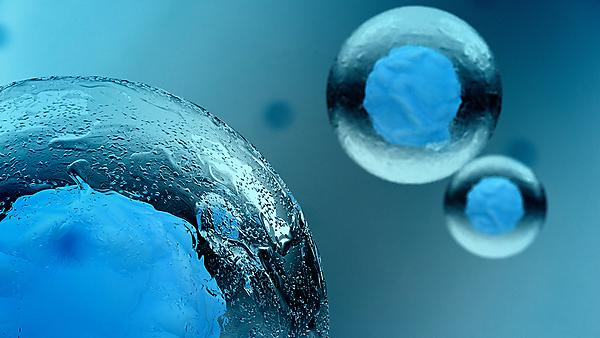 New insight into stem cell behaviour 'highlights therapeutic target for cancer treatment'