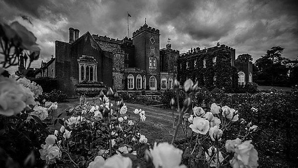 <p>Powderham Castle<br></p>