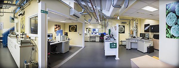 <p>The Electron Microscopy Centre</p>