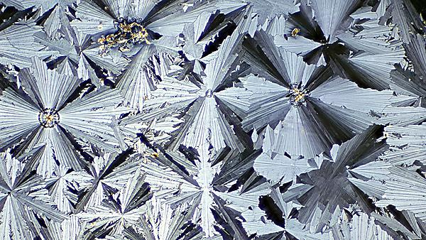 <p>  Microscope image of paracetamol in crystallized form. Paracetamol, also known as acetaminophen or APAP, is a medication used to treat pain and fever. Photographed in polarized light. Image courtesy of Getty Images.<br></p>