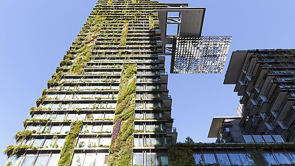 <p>  Low angle view of vertical garden-BioWall or living wall is a wall covered with living plants on high rise residential building with heliostat of motorised mirrors, Sydney Australia. Image courtesy of Getty Images.<br></p>
