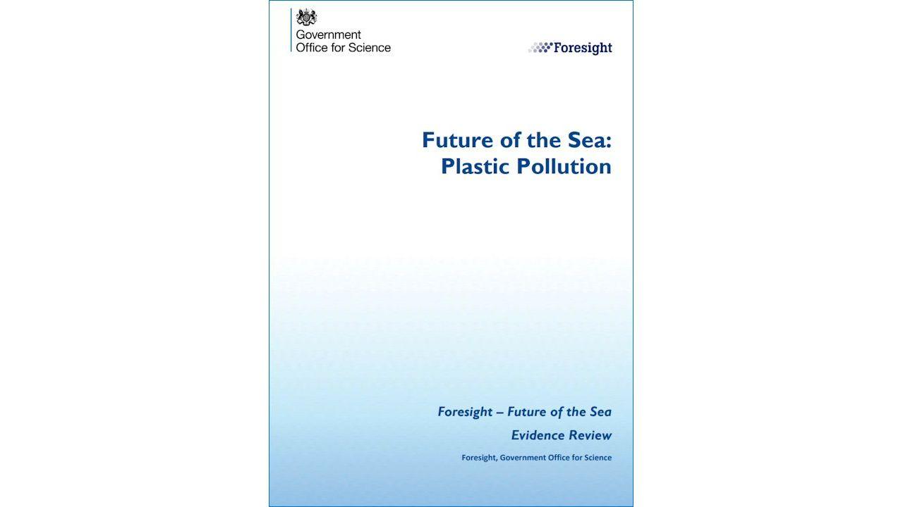 Future of the Sea: Plastic Pollution (2017)