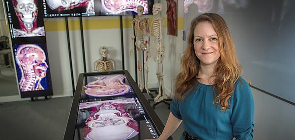 Virtual dissection teaching practice on global stage