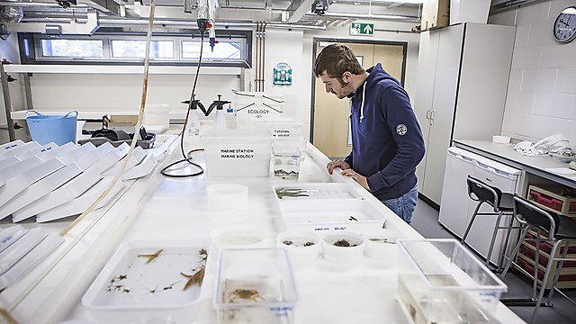 <p>                 Aquarium and wet laboratory space is available for research in a variety of fields from marine biology to ocean science and civil engineering to environmental sciences    <br></p>