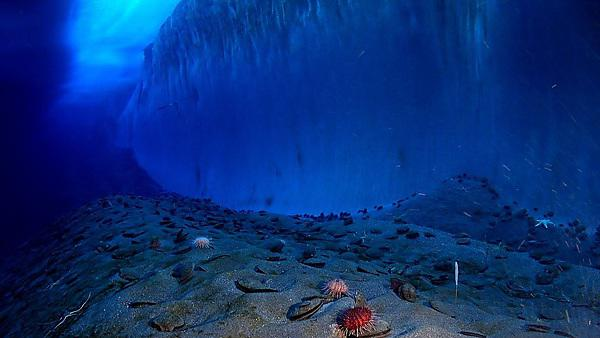 <p>Antarctica sea floor (Image courtesy of Pixabay)</p>