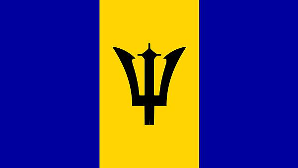 <p>Barbados flag</p>