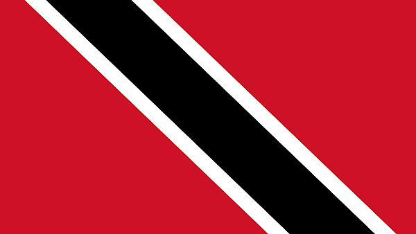 <p>Trinidad and Tobago flag</p>