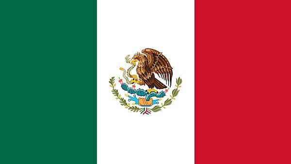 <p>Mexico flag</p>