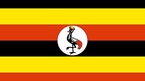 <p>Uganda flag</p>