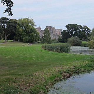 <p>Powderham Castle</p>