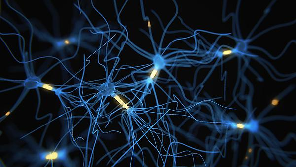 <p>Neuron cells network - 3d rendered image on black background. Image courtesy of GettyImages<br></p>