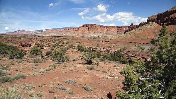 <p>Red slick rock canyons and mesa abound in the beautiful landscape of Capitol Reef National Park in Utah<br></p>
