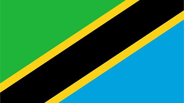 <p>Tanzania flag</p>