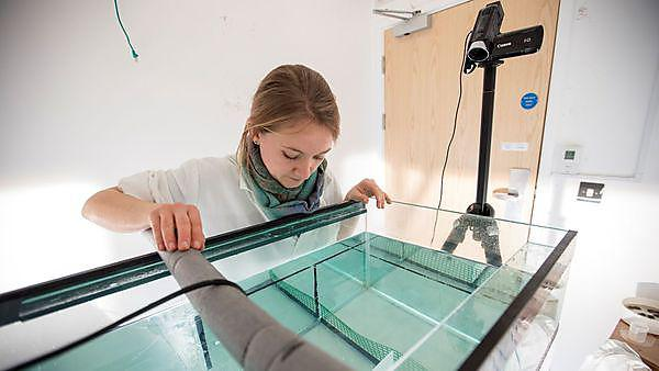 <p>Marine Biology students in the Davy Labs<br></p>