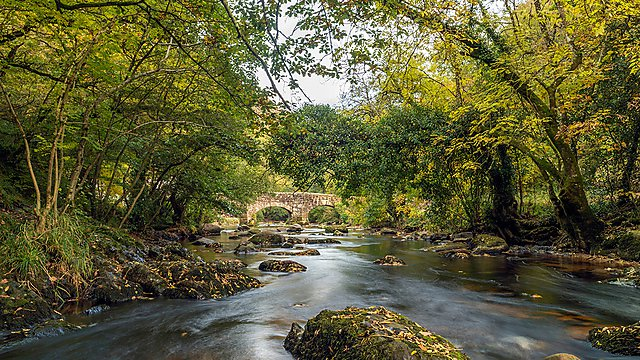 <p>River Teign, Dartmoor National Park (courtesy of Getty Images)<br></p>